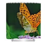 Butterfly Pose Shower Curtain