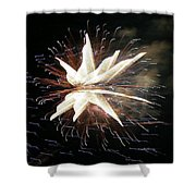 Butterfly Effects Shower Curtain