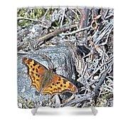 Butterfly Rock Shower Curtain