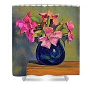Butterfly Roses Shower Curtain