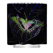 Butterfly Rws Work Number Two Shower Curtain