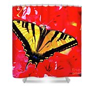 Butterfly Series #11 Shower Curtain