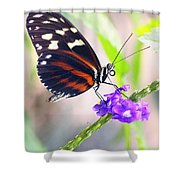 Butterfly Side Profile Shower Curtain by Garvin Hunter