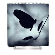 Butterfly Silhouette  Shower Curtain