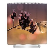 Butterfly Spirit #03 Shower Curtain by Loriental Photography