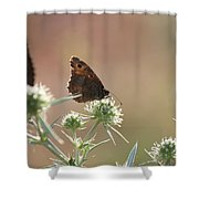 Butterfly Spring Nature Morning Scene Shower Curtain