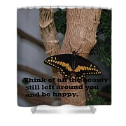 Butterfly Thing Of Beauty Shower Curtain