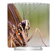 Butterfly Tongue Shower Curtain