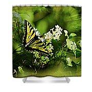 Butterfly Wall Decor Shower Curtain