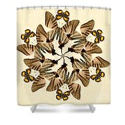 Butterfly Wheel Dance Shower Curtain