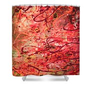 Butterfly Wing Nr1 Shower Curtain