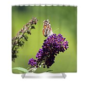 Butterfly With Flowers Shower Curtain