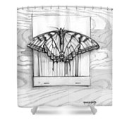 Butterfly With Matchbook Shower Curtain