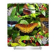 Butterfly Work 10 Shower Curtain
