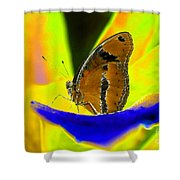 Butterfly Works Number 10 Shower Curtain
