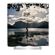 Buttermere Tree Shower Curtain