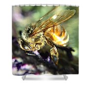 Buzz Off Shower Curtain