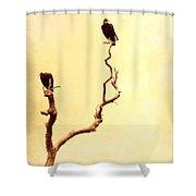 Buzzard Art Shower Curtain