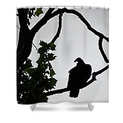 Buzzard Silhoutte Shower Curtain