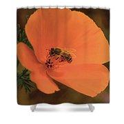 Buzzing Bee 1 Shower Curtain