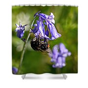 Buzzy Bee On Bluebells Shower Curtain