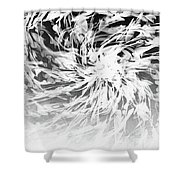 Bw Abstract Spiral Shower Curtain