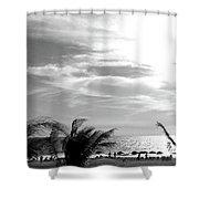 Bw Beach Shower Curtain