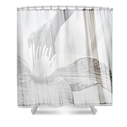 Bw Clematis Shower Curtain