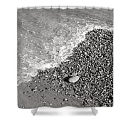 Bw2 Shower Curtain