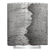 Bw3 Shower Curtain