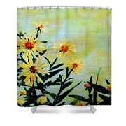 By And By Shower Curtain