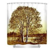By The Lake Shower Curtain
