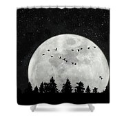 By The Light Of The Silvery Moon - Birds  Shower Curtain
