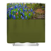 Hill Country Yucca Shower Curtain