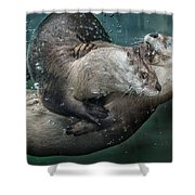 By The Skin In His Teeth Shower Curtain