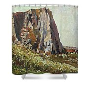 By The Stone Warrior Shower Curtain
