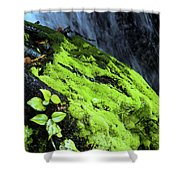 By The Waterfall Shower Curtain
