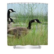 By The Water's Edge Shower Curtain