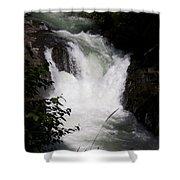Bz Falls 1 Shower Curtain