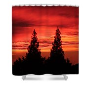 Ca. Dreaming Shower Curtain