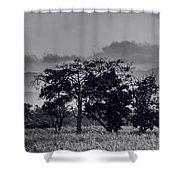 Caballeria El Salvador Shower Curtain