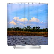 Cabbage Palms And Salt Marsh Grasses Of The Waccasassa Preserve Shower Curtain