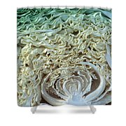 Cabbage Universe Shower Curtain