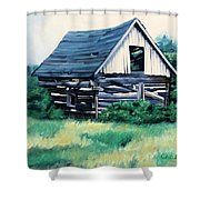 Cabin In The Clearing Shower Curtain