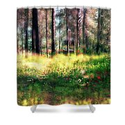 Cabin In The Woods In Menashe Forest Shower Curtain