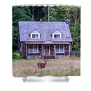 Cabin Life Shower Curtain