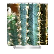 Cactus 3 Shower Curtain