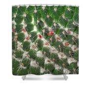Cactus 5 Shower Curtain