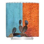 Cactus And Colorful Wall Shower Curtain