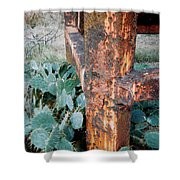Cactus And Rust Shower Curtain